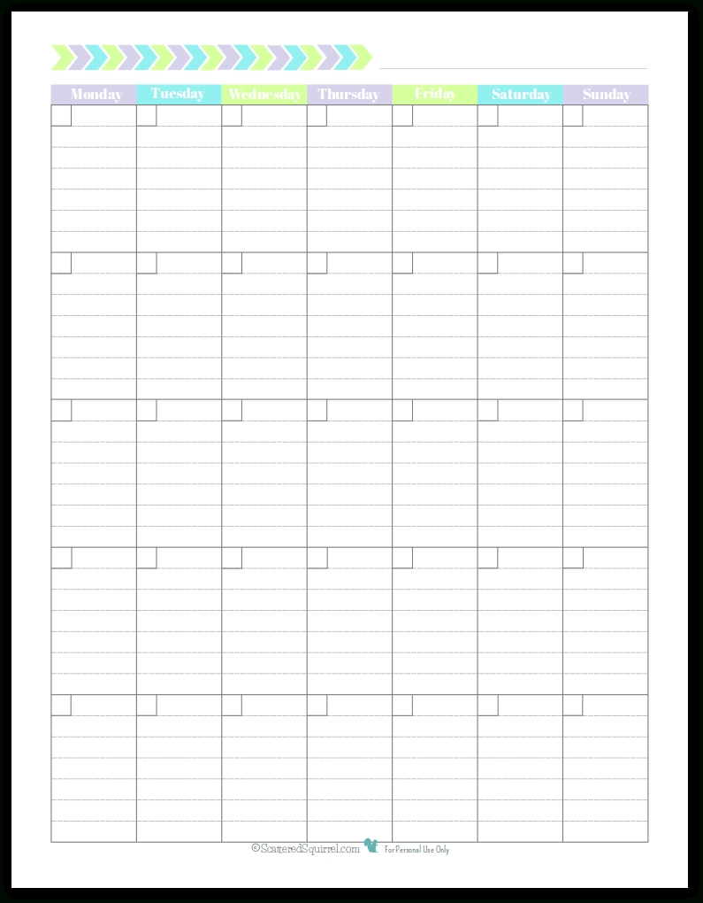 Monday Start Portrait Full Size - Scattered Squirrel  Blank Monthly Calendar Monday Start
