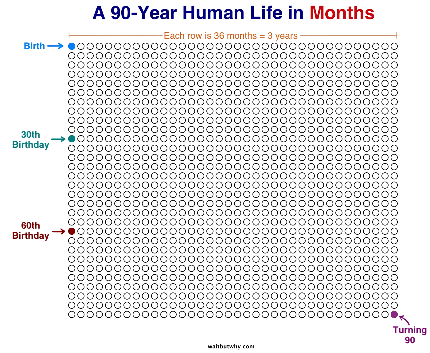 Your Life In Weeks - Wait But Why  Months With Number Of Days On A Chart Paper