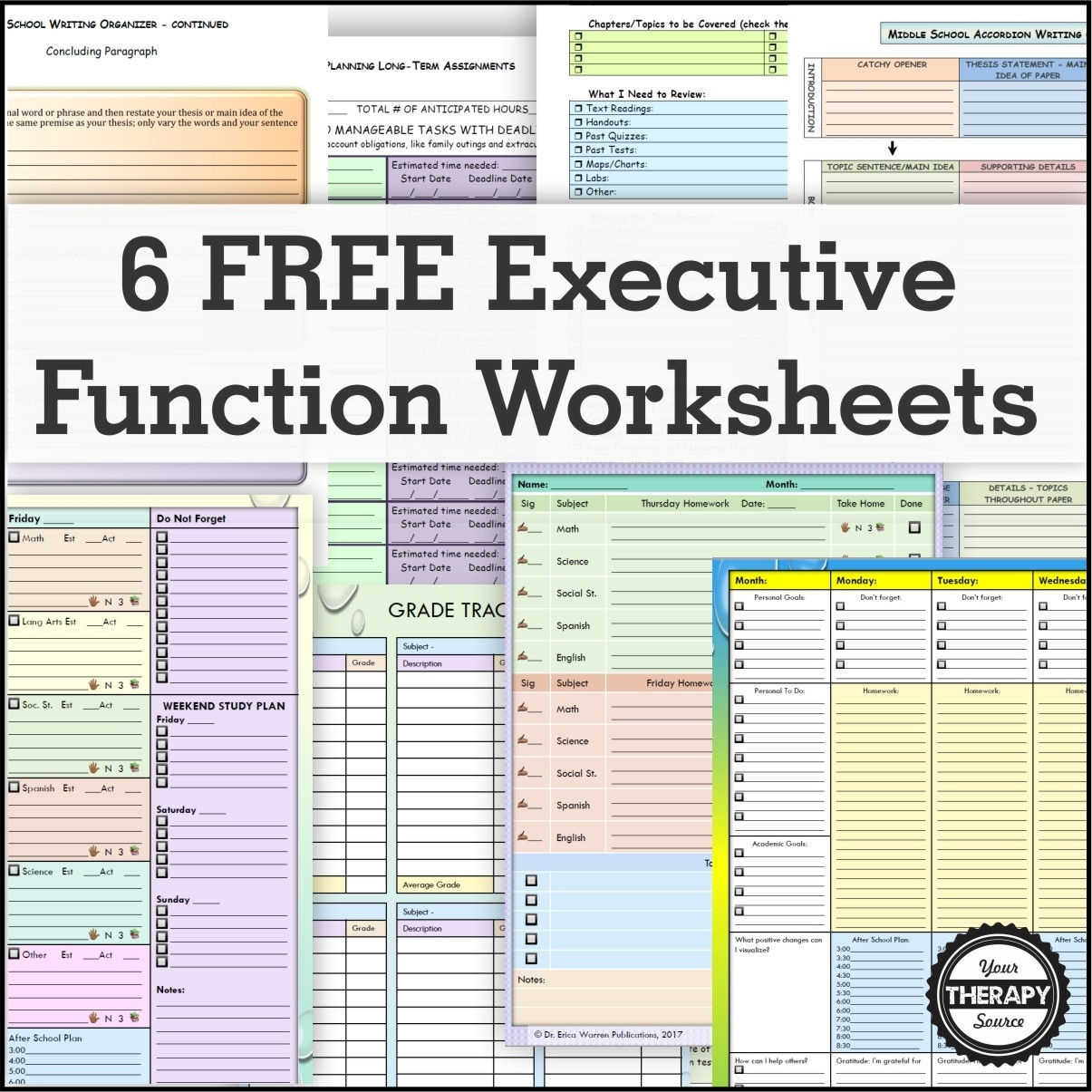 6 Free Executive Functioning Activity Worksheets - Your Therapy Source  Homework Agenda Template 7Th Grade