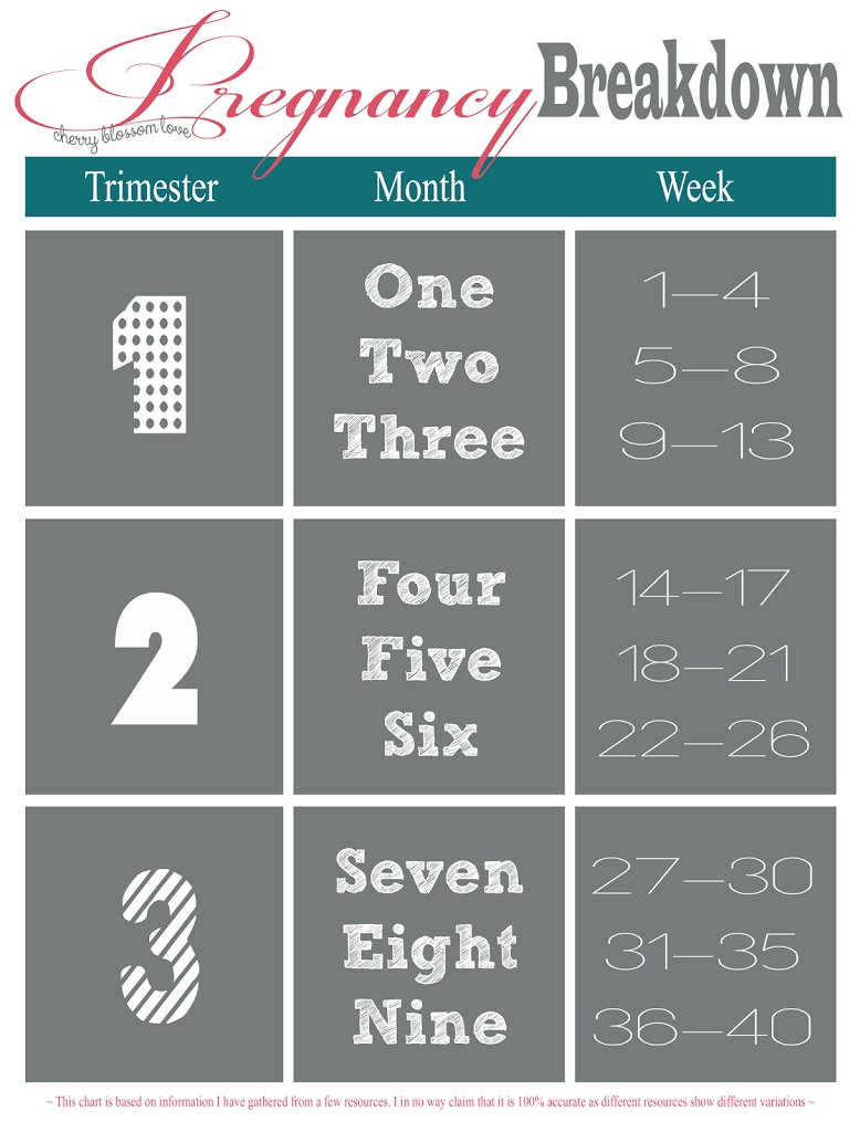 Pregnancy Week, Month, Trimester Chart | Momma To Be | Trimester  Weekly Pregnancy Calendar Week By Week Pregnancy Calendar