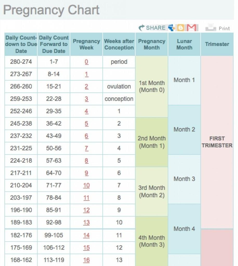 Printable Pregnancy Calendar Weekweek Printable Pregnancy Weekly  Weekly Pregnancy Calendar Week By Week Pregnancy Calendar