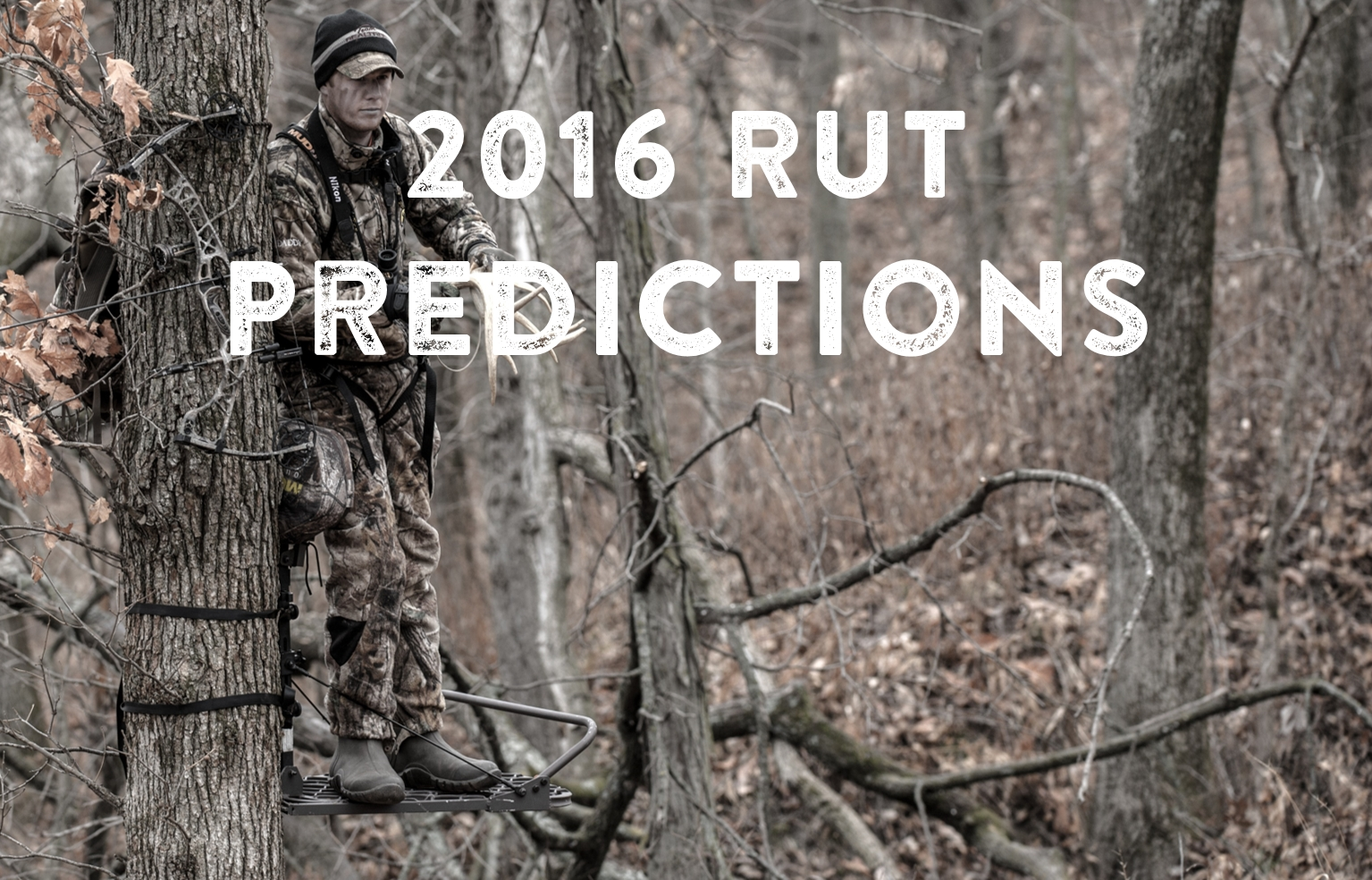 2016 Rut Predictions For Every Theory - Legendary Whitetails  Georgia Rut Predictions 2020