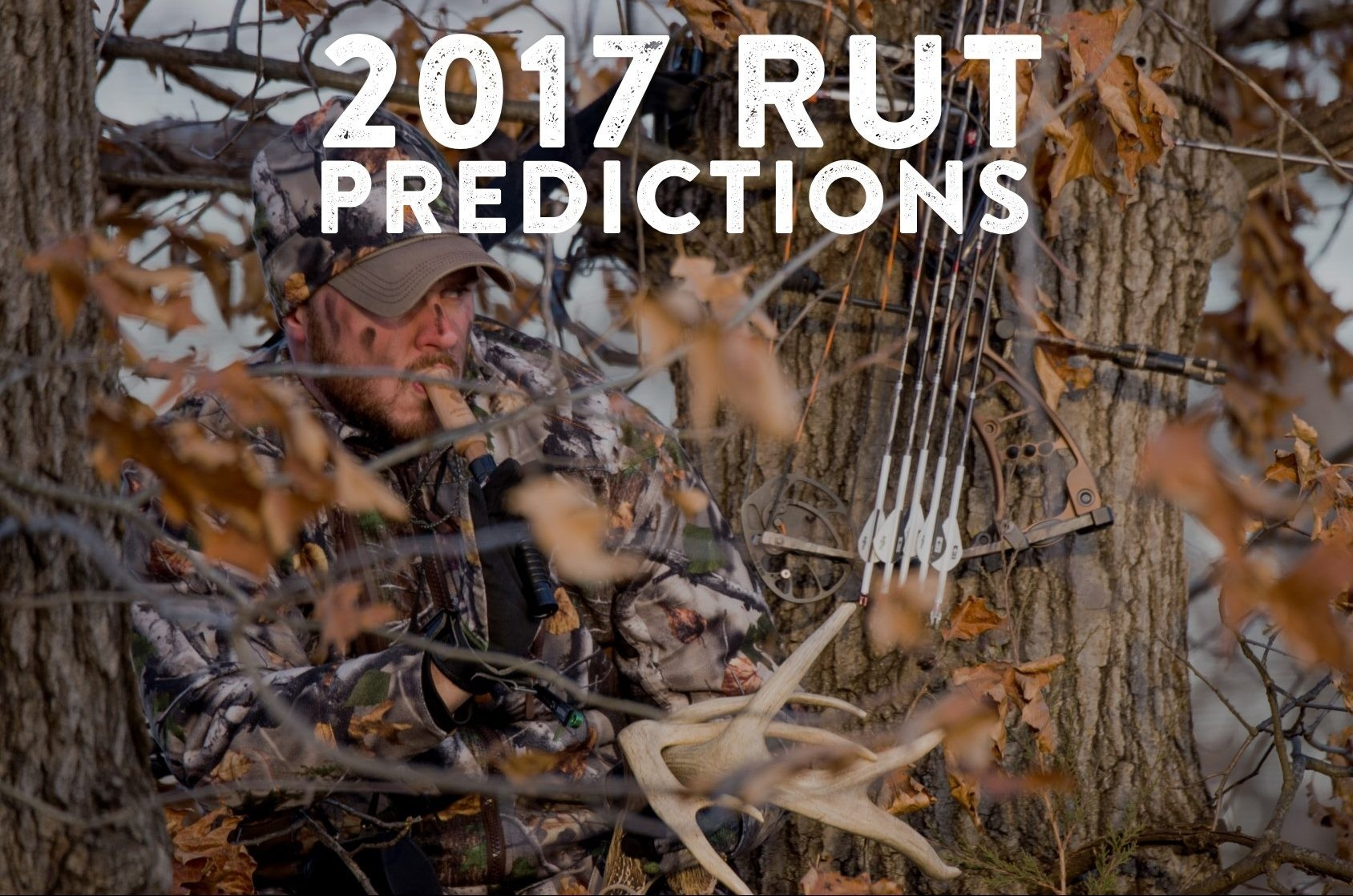 2017 Rut Predictions For Every Theory - Legendary Whitetails  Deer Rut Whitetail 2020