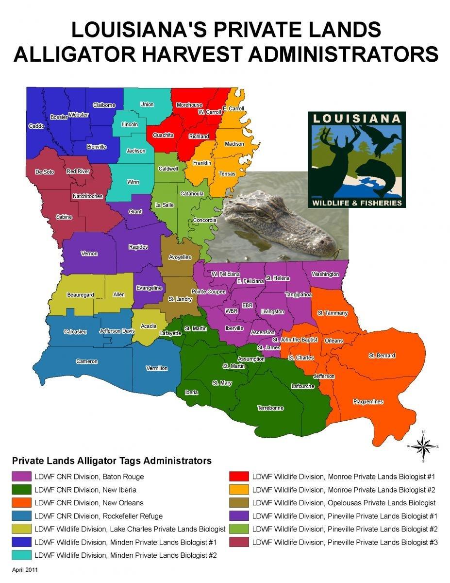 Alligator Hunting | Louisiana Department Of Wildlife And  Louisiana Hunter Tax Free Weekend 2020