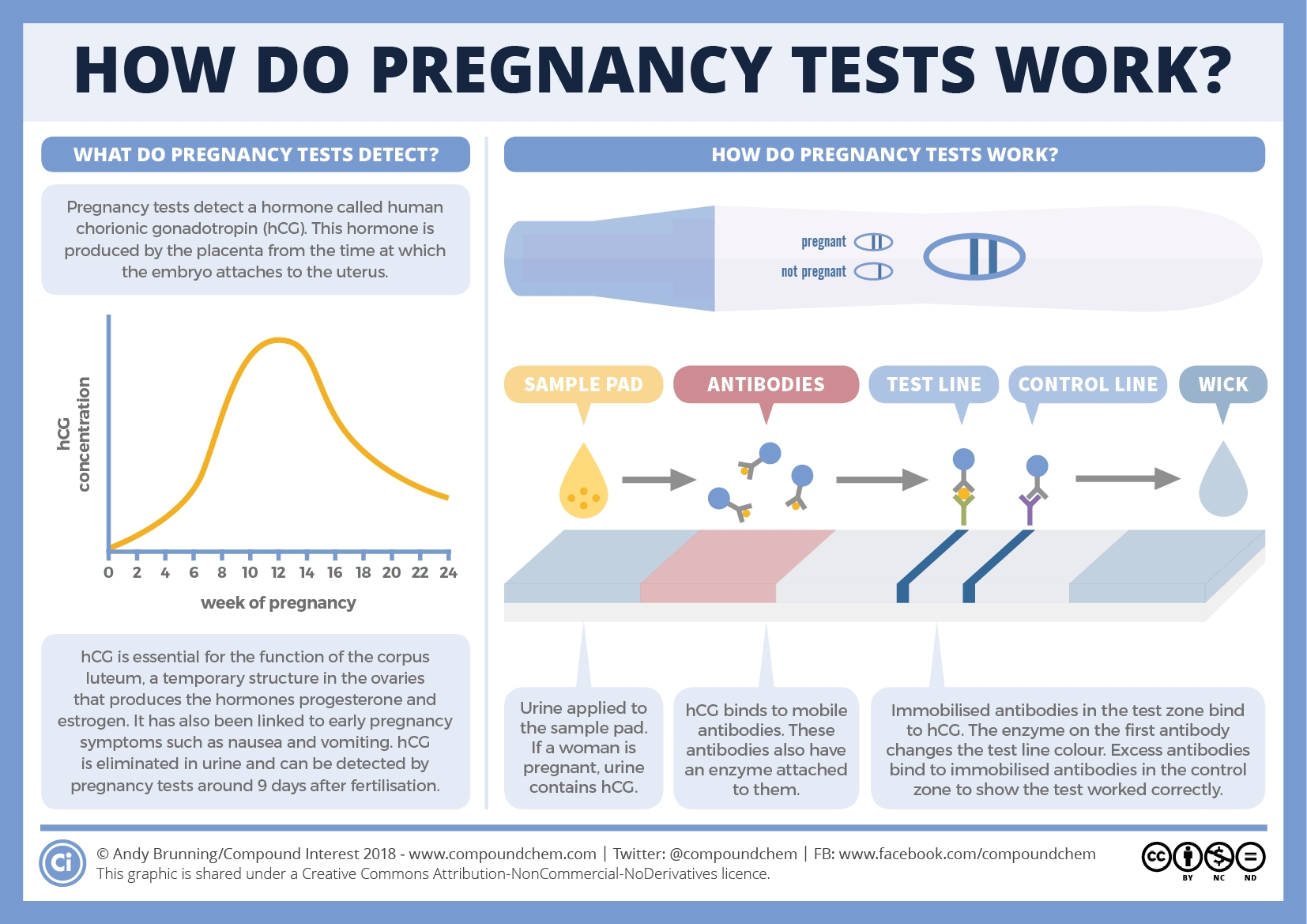 How Do Pregnancy Tests Work? | Compound Interest  Baby Gender Chart 99 Accuracy