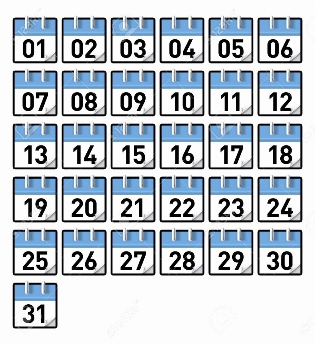 Printable Calendar Numbers January Calendar Numbers 1 31  Numbers 1 31 Printable