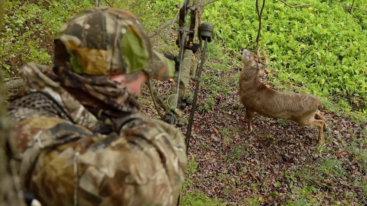 2016 Whitetail Rut Predictions With Charles Alsheimer  Shopdeerhunting.com 2020 Calendar Rut Forecast