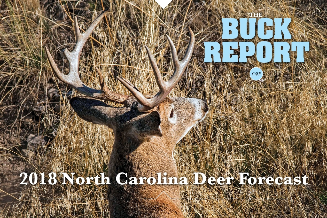 2018 North Carolina Deer Forecast  2020 Deer Season Forecast