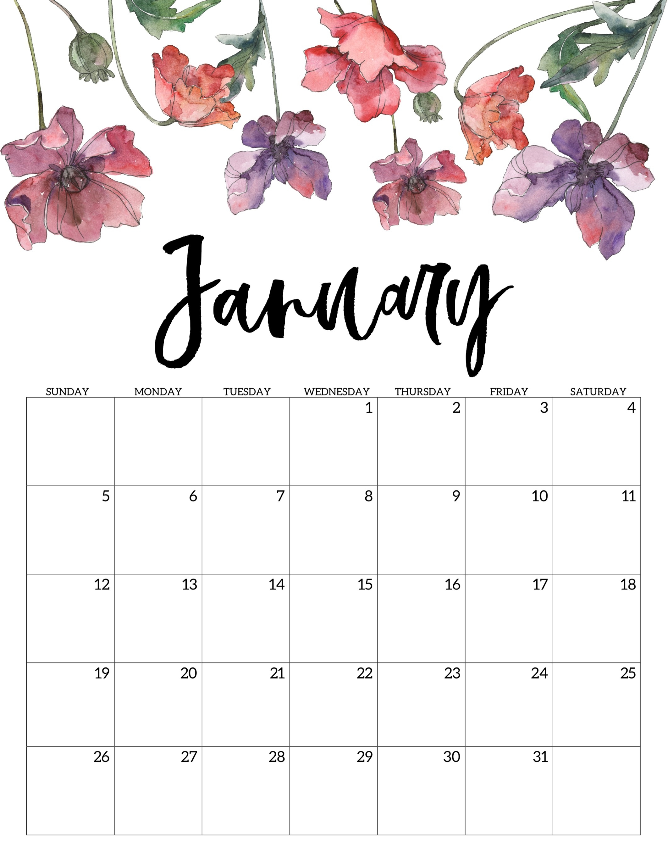 2020 Free Printable Calendar - Floral - Paper Trail Design  Printable 2020 Monthly Calendar Template Girly