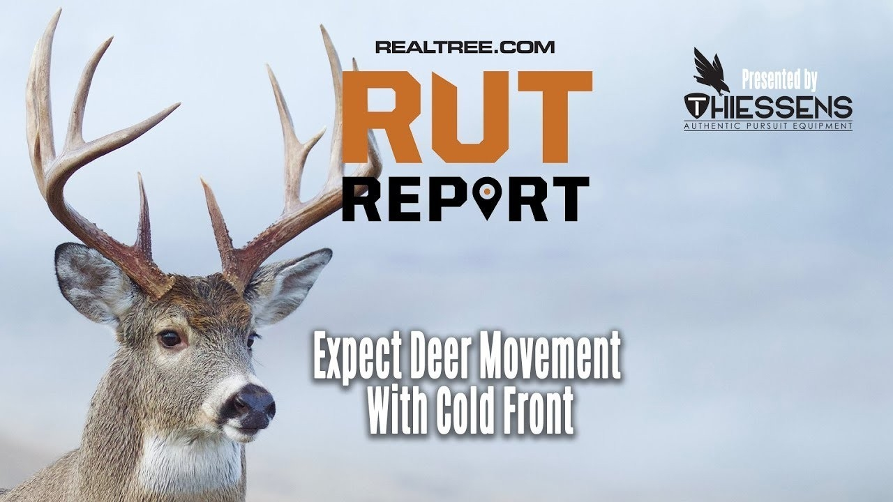 Expect Major Deer Movement With Latest Cold Front | Rut Report 2019  Presentedthiessens  2020 Rut Prediction Illinois