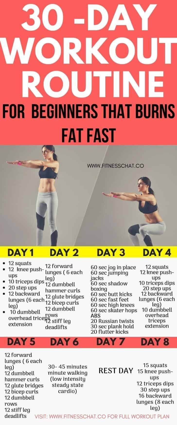 Pin On Full Body Workouts  30 Exercise Chart For Beginners