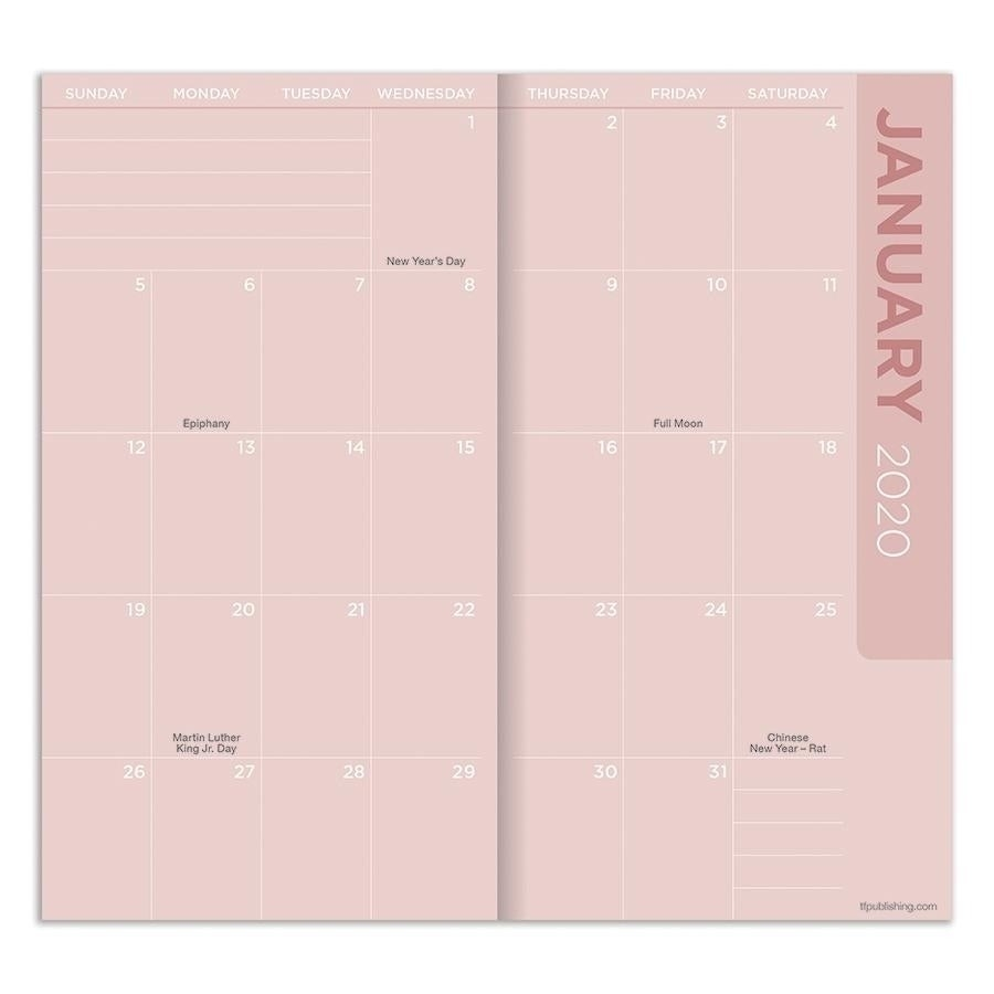 2020-2021 Coca-Cola Officially Licensed Coke 2-Year Small Monthly Planner -  Pocket Calendar  Small Mini Checkbook Size Calenders