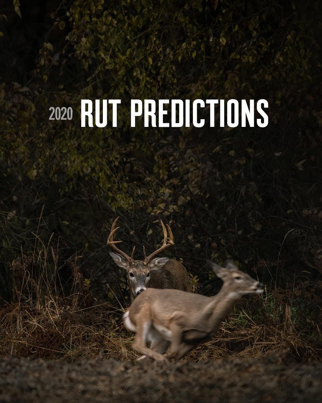 2020 Rut Predictions | Onx Maps  Texas Deer Rut Dates