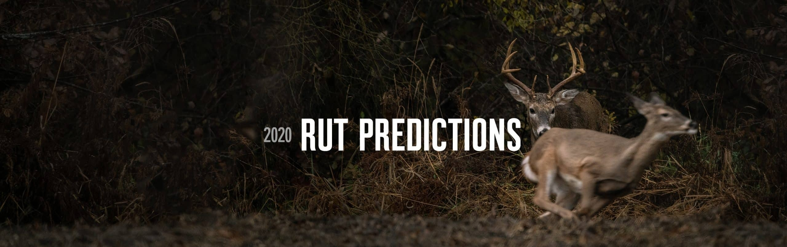 2020 Rut Predictions | Onx Maps  When Is The Peak Of The Rut In Pa. In 2021