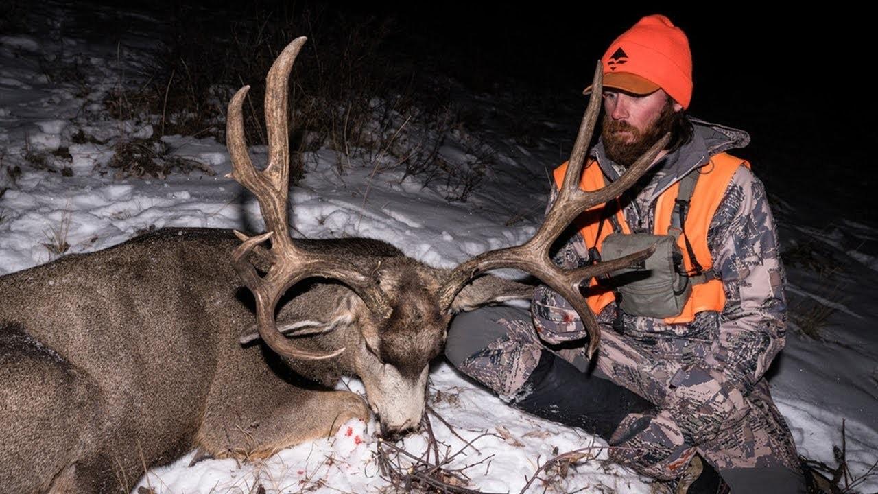 6 Tactics For Hunting Mule Deer Bucks In The Rut | Gohunt  Kansas Deer Rut 2021