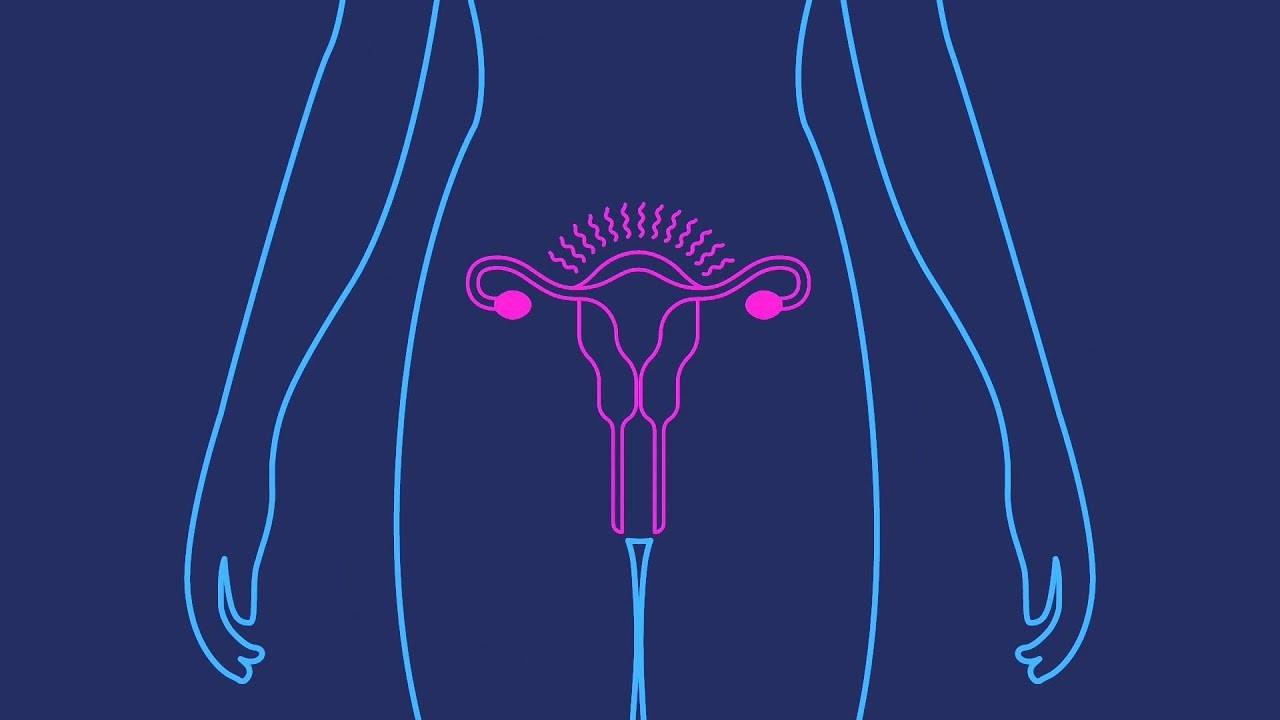 Depo-Provera | Birth Control Shot | Birth Control Injection  Depo Injection Timings Calendar
