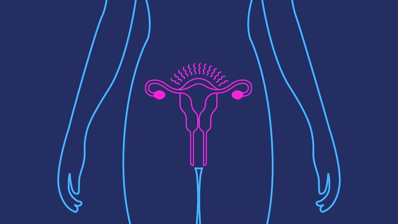 Depo-Provera | Birth Control Shot | Birth Control Injection  July 20Th Depo Provera Injection When Is Next One Due