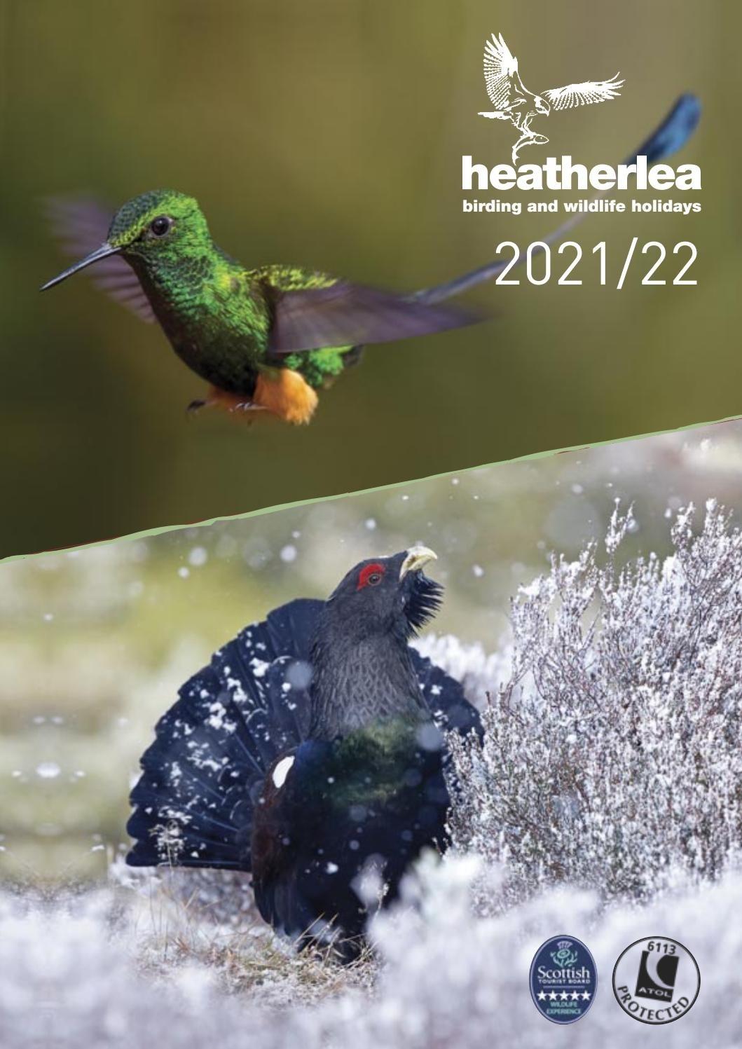 Heatherlea Brochure 2021/22Heatherlea Birdwatching - Issuu  2021 Southern Rutt
