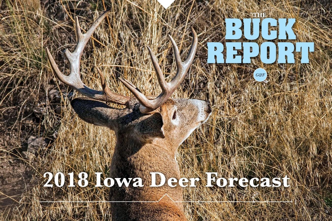 Iowa  Indiana Deer Forcast