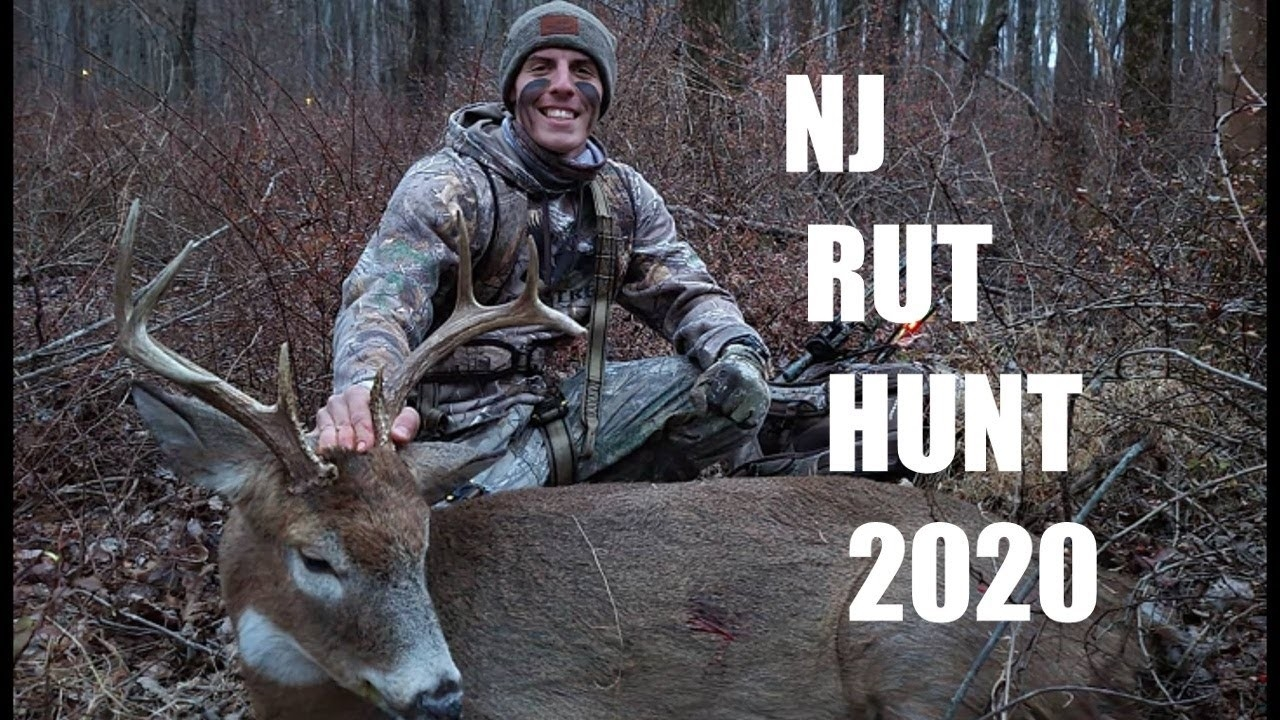 Nj Bow Hunting 2020 8 Pointer (Rut Action)  Rut In Nj