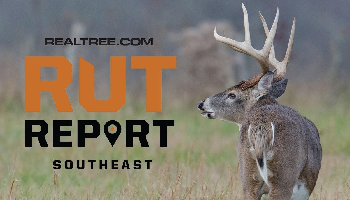 Nov. 25 Southeast Rut Report, 2020  Louisiana Deer Rut 2021