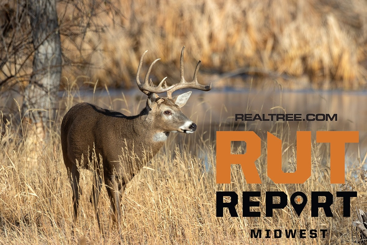 Oct. 22 Midwest Rut Report, 2020  2020 Rut Forcast For Wisconsin
