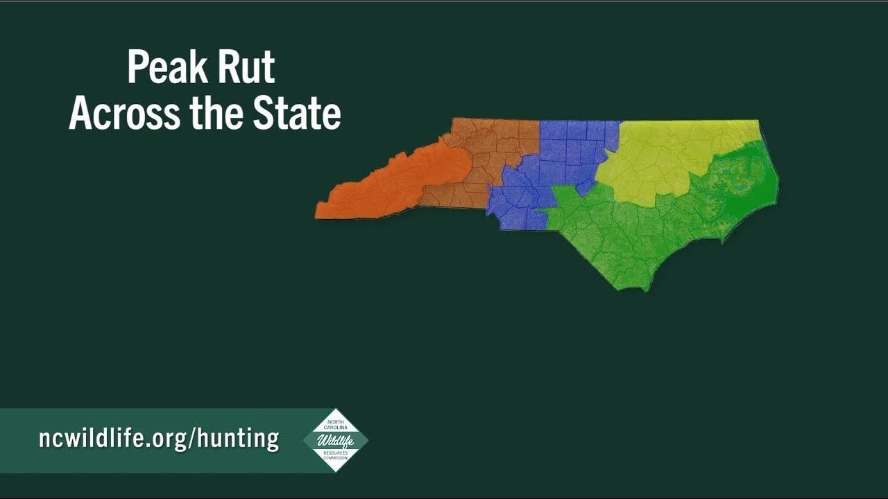 Peak Of The Rut Across North Carolina  Missori Rut Prediction 2021
