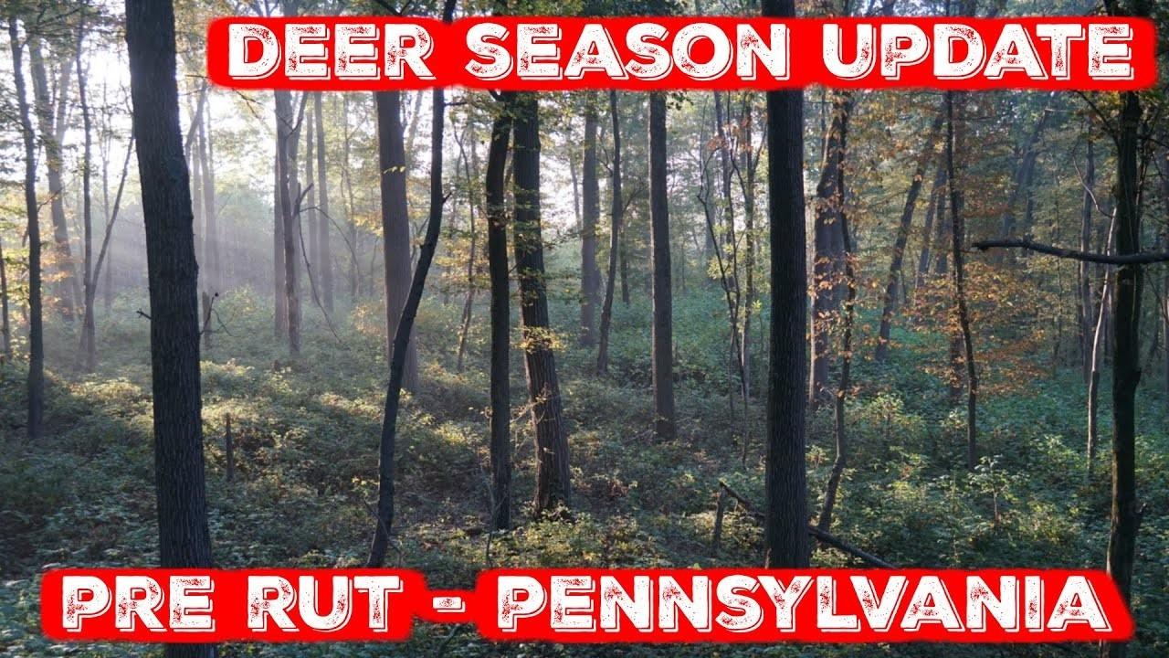 Pennsylvania Deer Season Update - Late October (Pre Rut)  Whitetail Pre Rut Dates In Pa