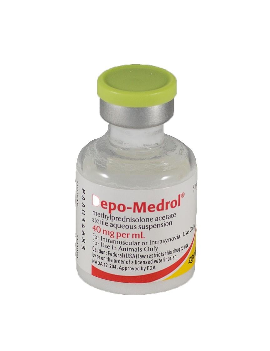 Phenylbutazone 1 Gram/Scoop Powder (Manufacturer May Vary)  Depomedrol Caland