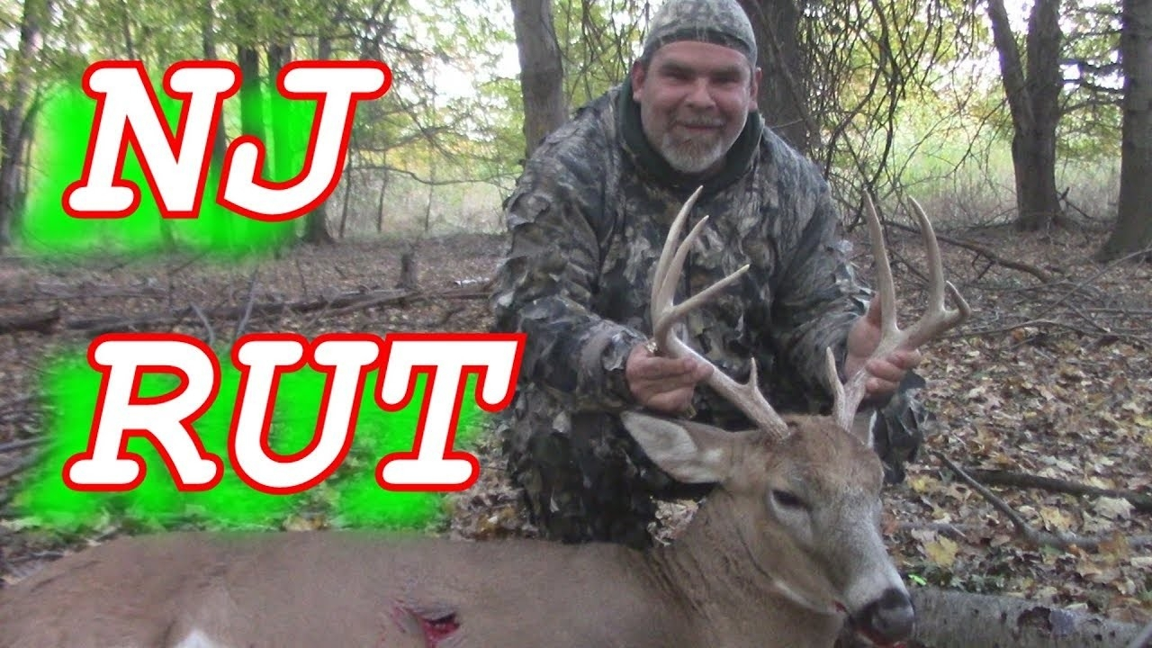 Rattling In Buck To 20 Yards -Bow Hunting Nj-  Rut In Nj