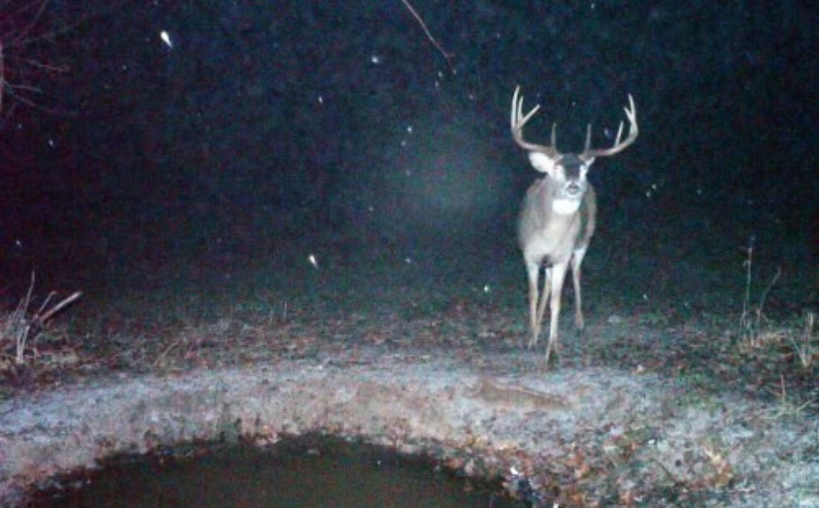 Whitetail Rut Weather Guide | Whitetail Habitat Solutions  Wisconsin Rut Forecast