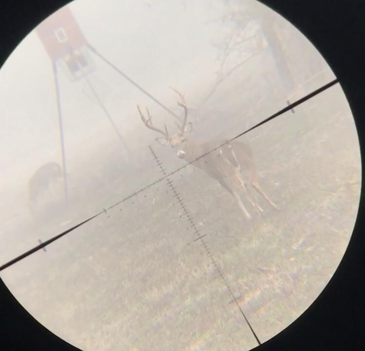 2020/2021 Deer Hunting Pics Thread - Page 1 - Ar15  Doralabama Deer Rut 2021