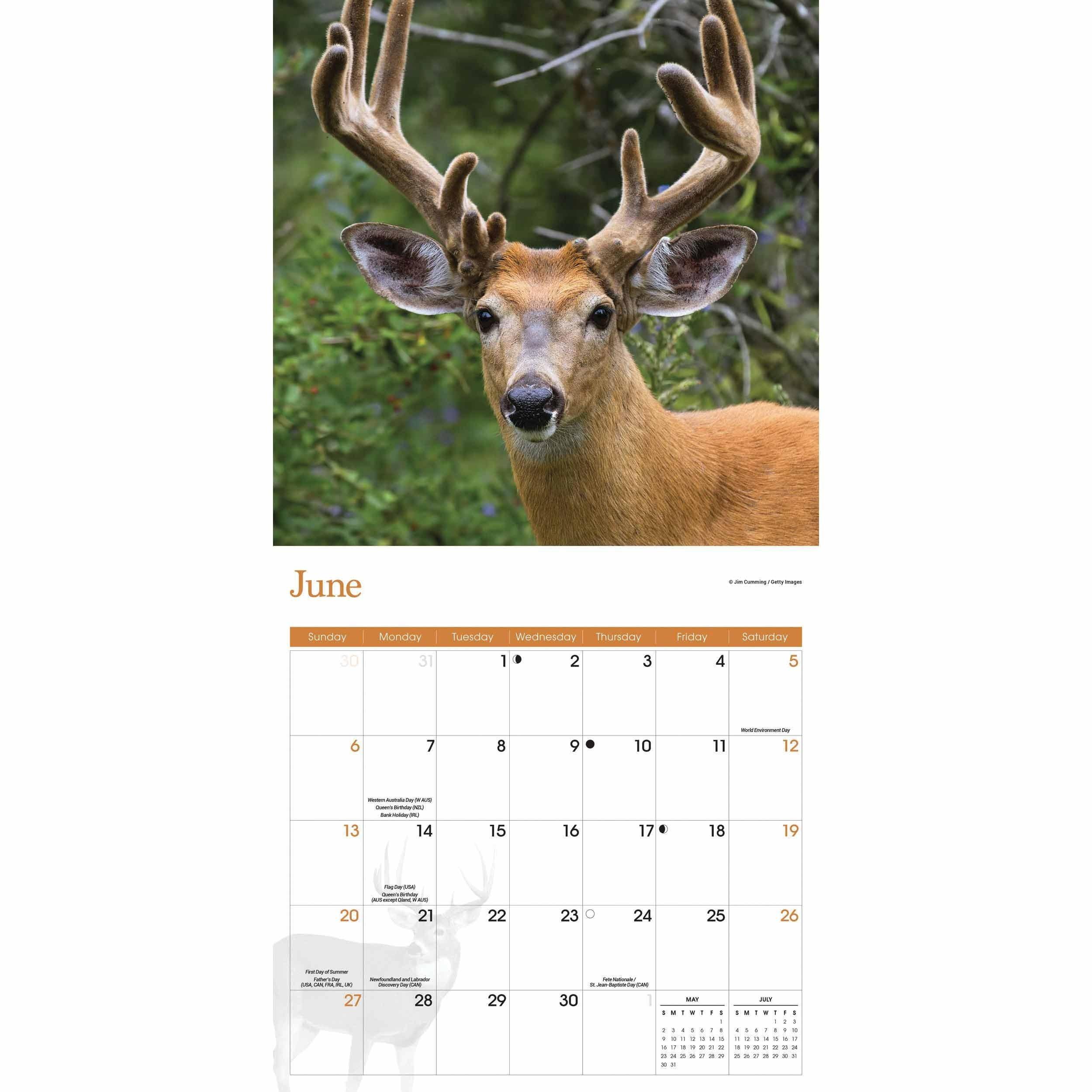 2021 Deer And Deer Hunting Rut Calendar | Calendar  2021 Michigan Rut Dates