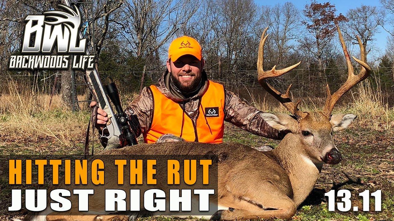 Buck Daze Deer Hunting In Georgia Whitetail Rut Wide Open  Ga Deer Rut Map