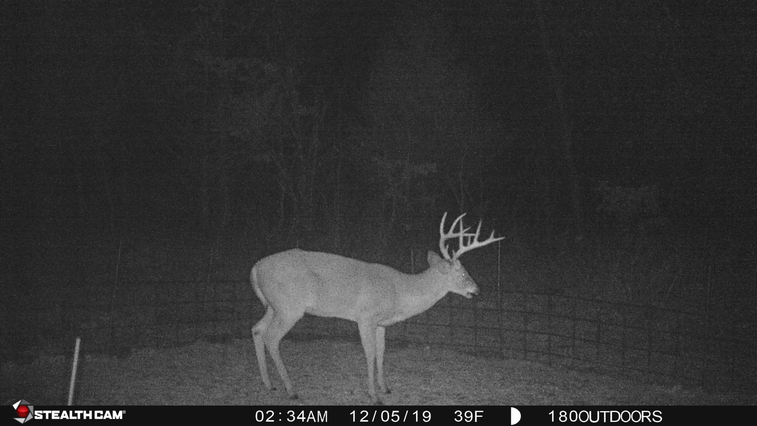 Deer Rut 2021 | Calendar Printables Free Blank  2021 Deer Rut In Missouri
