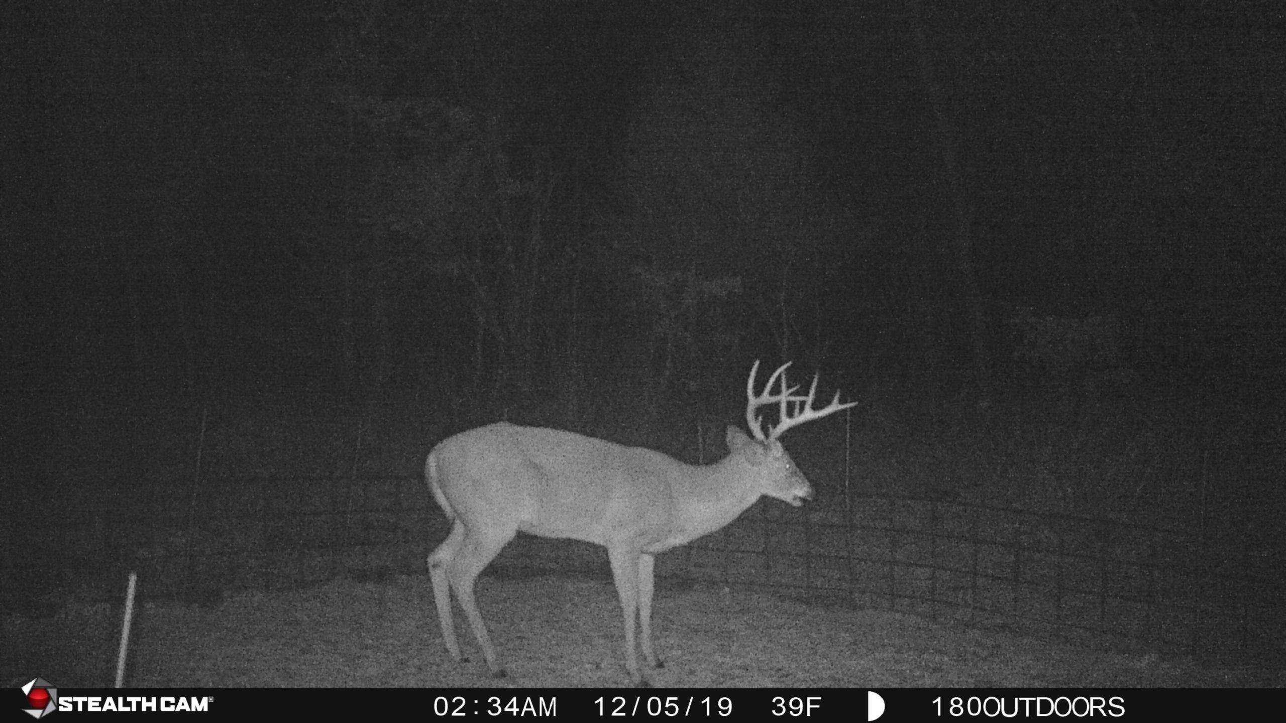 Deer Rut 2021 | Calendar Printables Free Blank  2021 Deer Season Rut Report Northern Missouri
