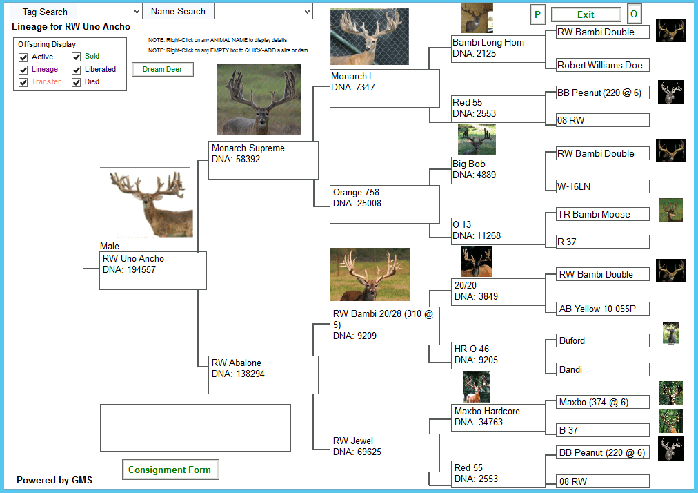 Monarch Supreme 15 Uno Ancho - Deer Breeder In Texas  2021 Texas Whitetail Outlook