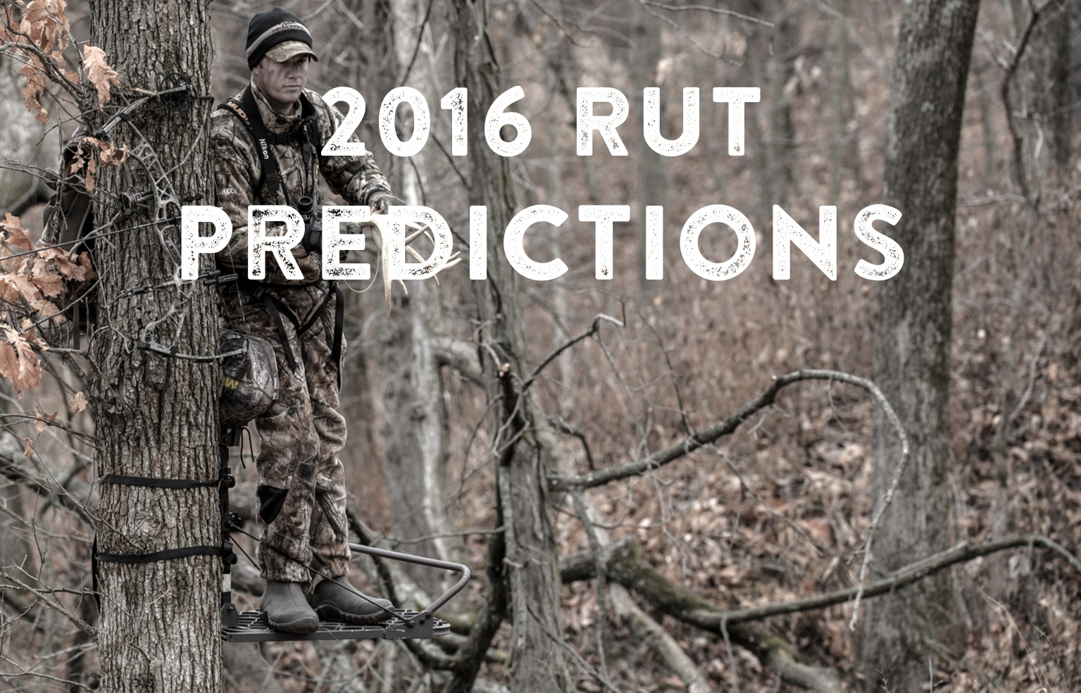 The Deer Rut For Ga 2021 | Calendar Template Printable  When Is The Rut Predicted For Maryland 2021