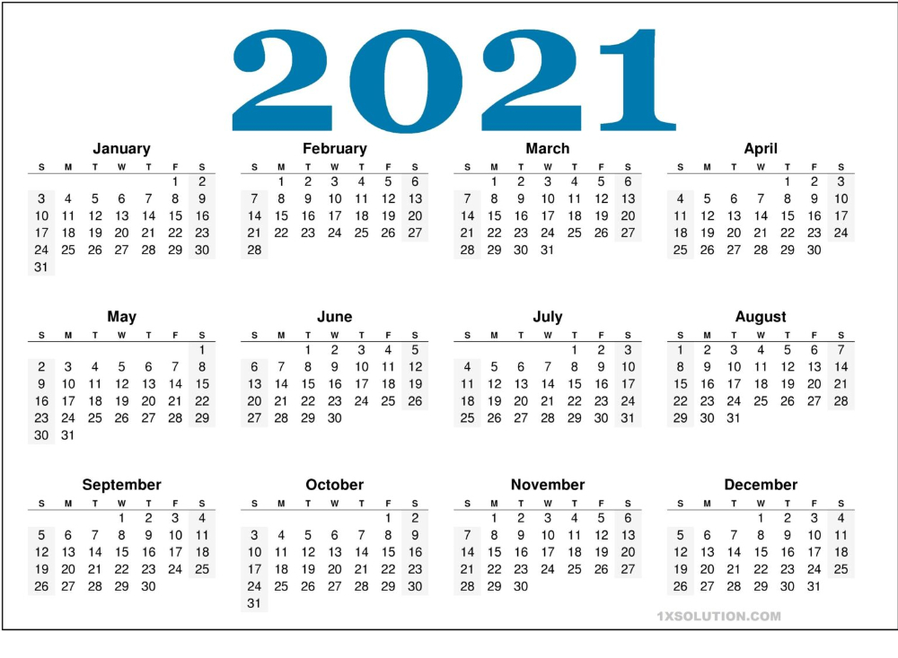 2021 Daily Calendar: To Write Your Important Schedule  Printable Pocket Calendar 2021