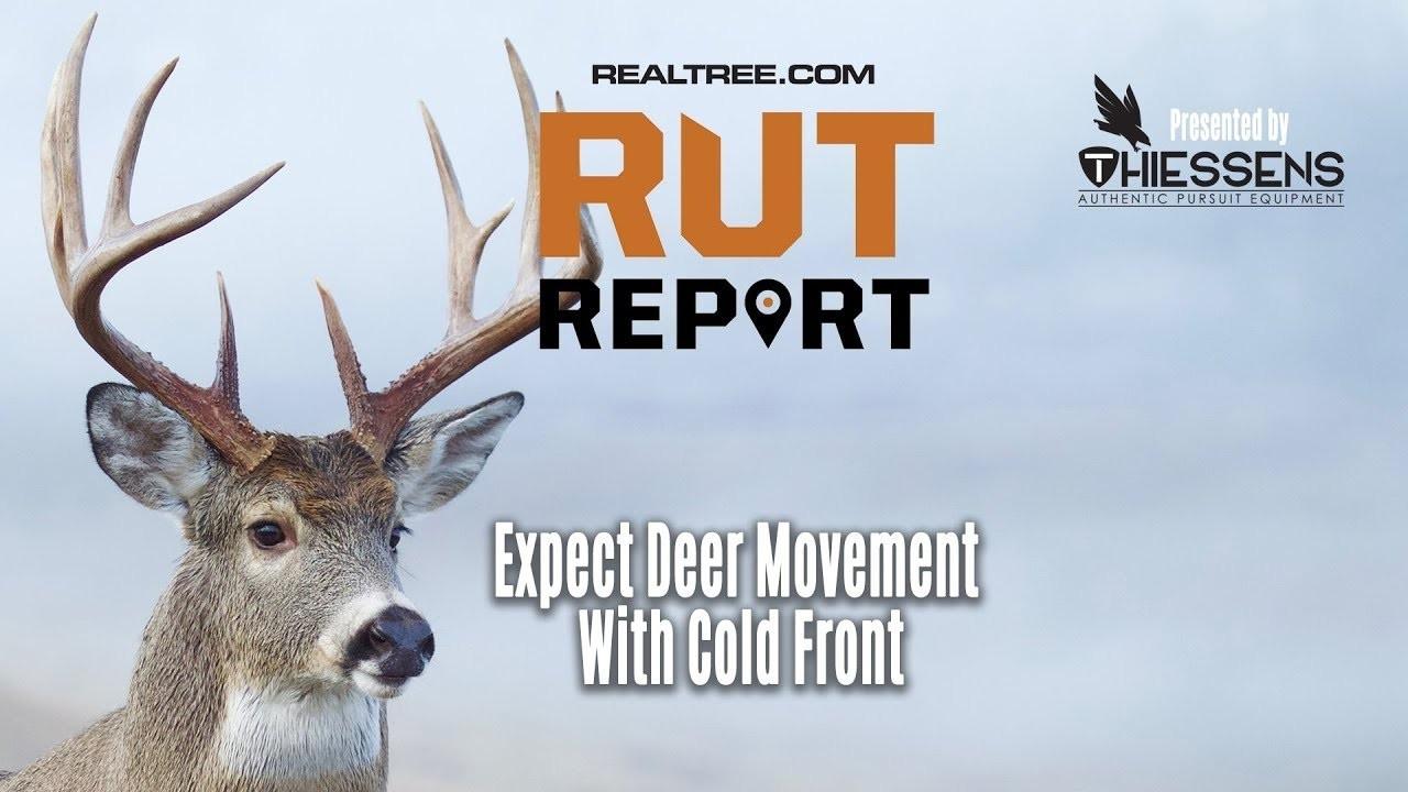 Deer And Deer Hunting Rut Prediction 2021   Calendar  Ga 2021 Deer Rut Map