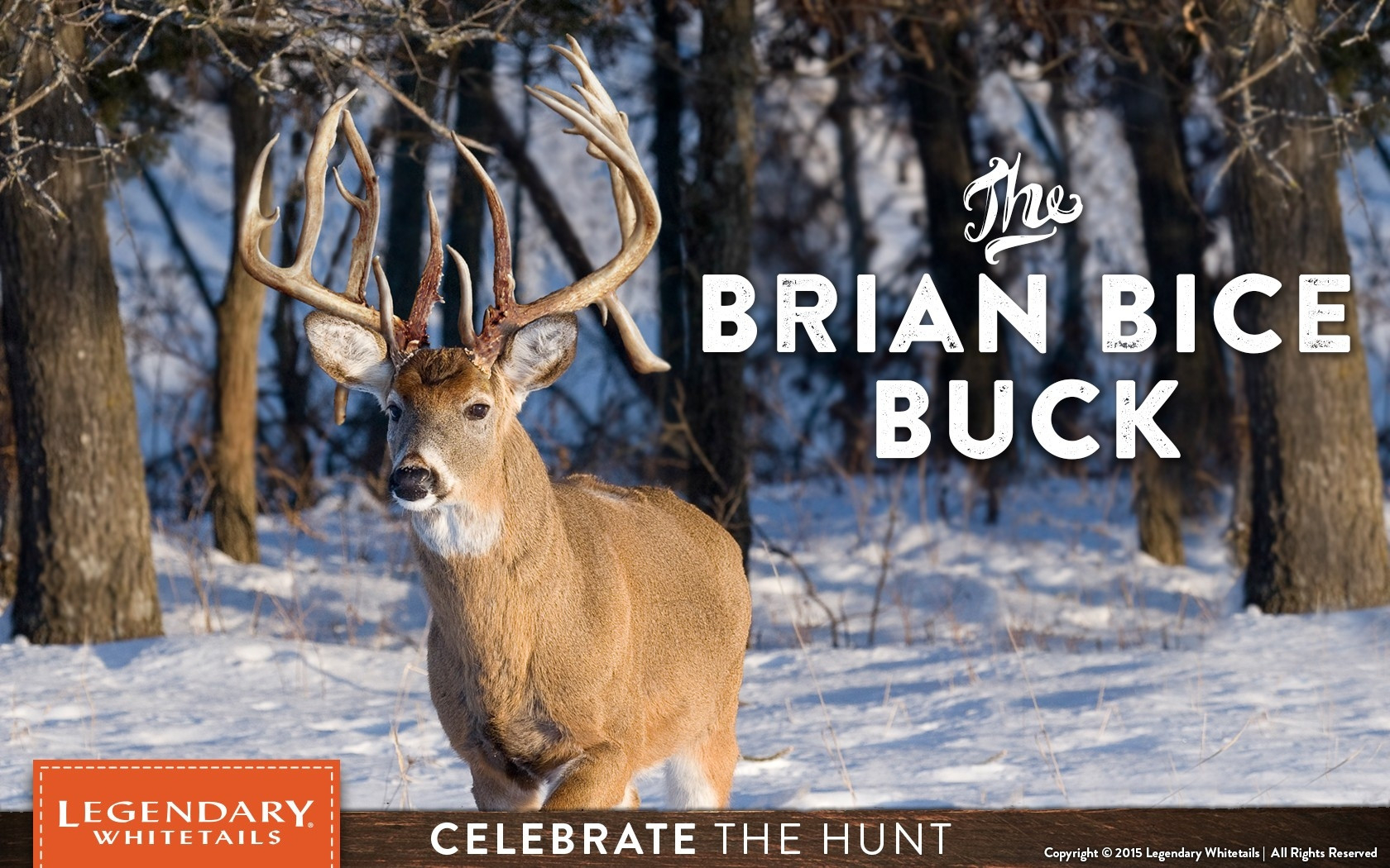 Midwest 2021 Whitetail Rut Predictions | Calendar Template  Wisconsin 2021 Whitetail Deer Rut