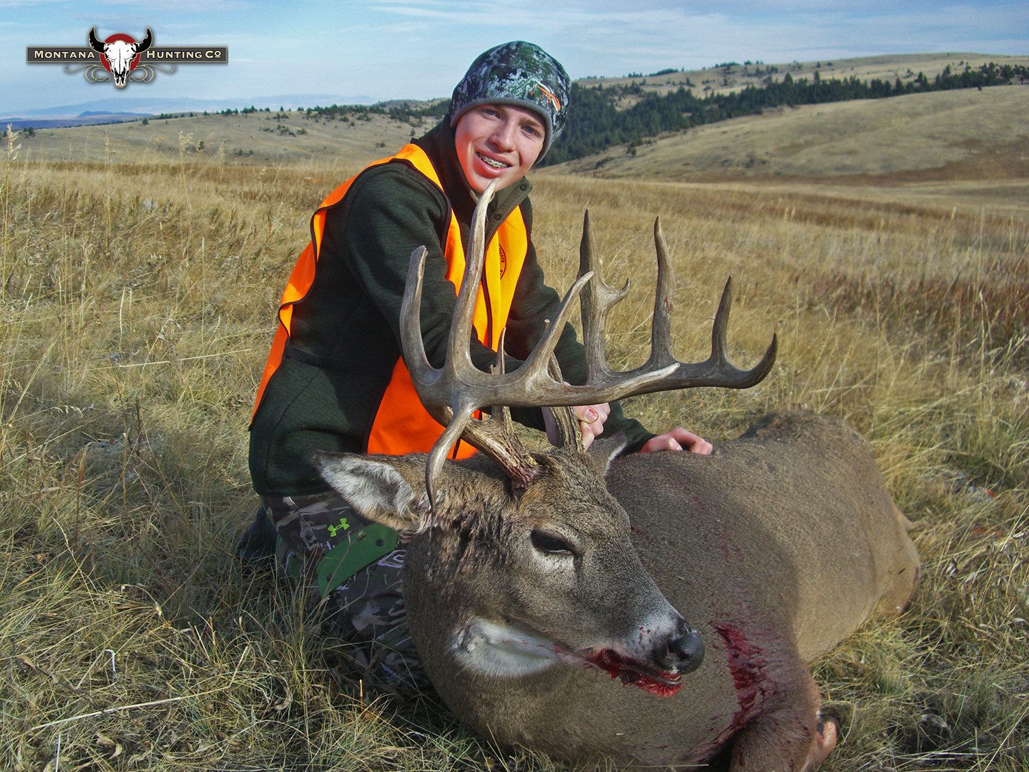 Montana Hunting Company White-Tailed Deer Gallery  2021 Peak Whitetail Deer In North Central Wisconsin