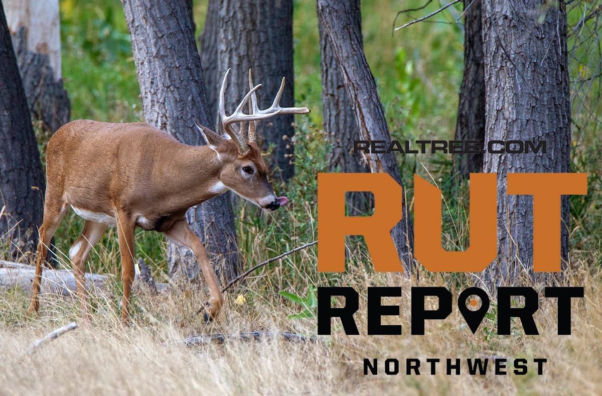 Peak Rut Predictions For 2021   Calendar Template Printable  Deer Rut For 2021